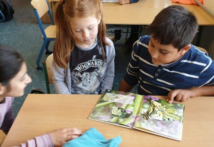 Grundschule Gladbeck, guter Unterricht